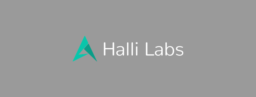 google-acquired-halli-labs-india